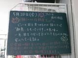 2011/5/20南行徳