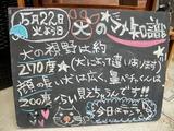 2012/5/22森下