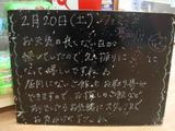 2010/02/20葛西