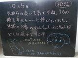 081005松江