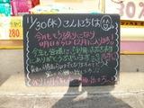 2011/11/30森下
