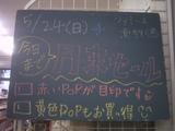 090524南行徳