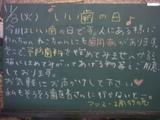 051108南行徳