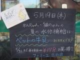 2011/5/19立石