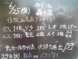 2010/06/25森下