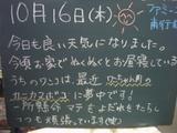 081016南行徳