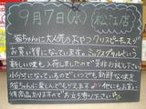 2011/9/7松江