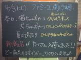 2010/04/03南行徳