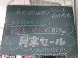 2012/8/23南行徳
