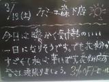 2010/03/13森下