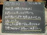 2011/9/17森下