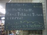 091029南行徳