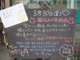 2012/3/30立石