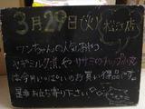 2011/03/29松江