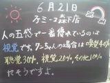 2011/6/21森下
