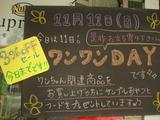 2012/11/11松江