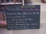 2010/04/23南行徳