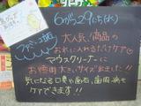 2011/6/29立石