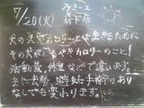 2010/07/20森下