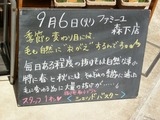 2011/9/6森下
