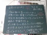 2011/6/22南行徳