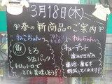 2010/3/18立石