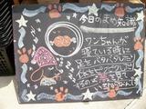 2012/5/29森下