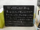 081127松江