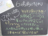 2011/6/15立石