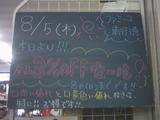 2010/8/5南行徳