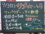 9月3日南行徳店