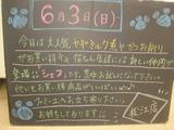 2012/06/03松江
