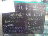 2010/09/04立石