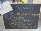2011/9/7立石