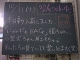 081011南行徳