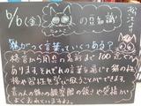 080606松江