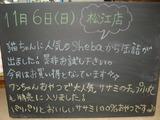 2011/11/06松江