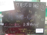 2010/7/25立石