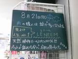 2011/8/21南行徳
