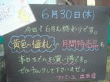 2011/6/30立石