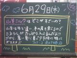 060629南行徳