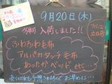 2012/9/20立石