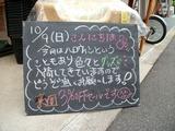 2011/10/9森下