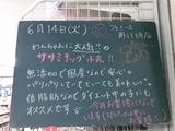 2011/6/14南行徳