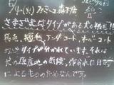 2010/05/04森下