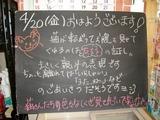 2012/4/20森下