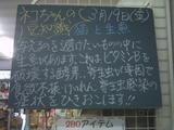 2010/03/19南行徳