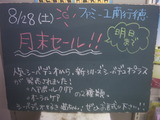 2010/8/28南行徳