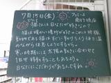 2011/7/15南行徳