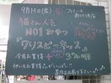 2012/9/14南行徳